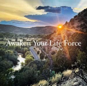 Awaken Your Life Force digital course